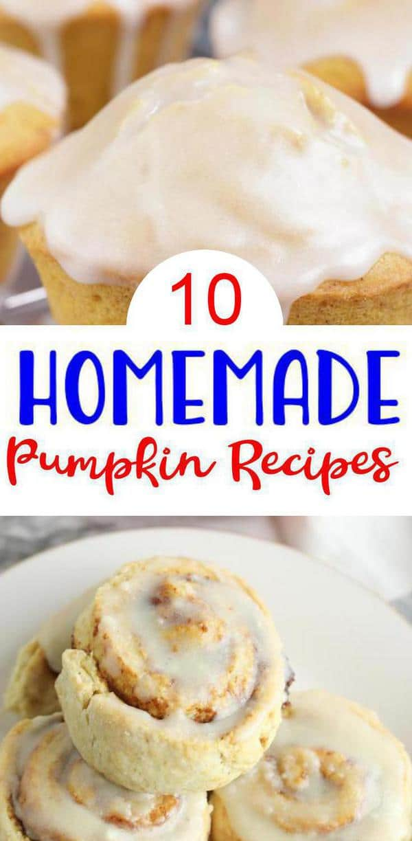 10 Pumpkin Recipes – BEST Pumpkin Food Ideas – Easy Fall Food