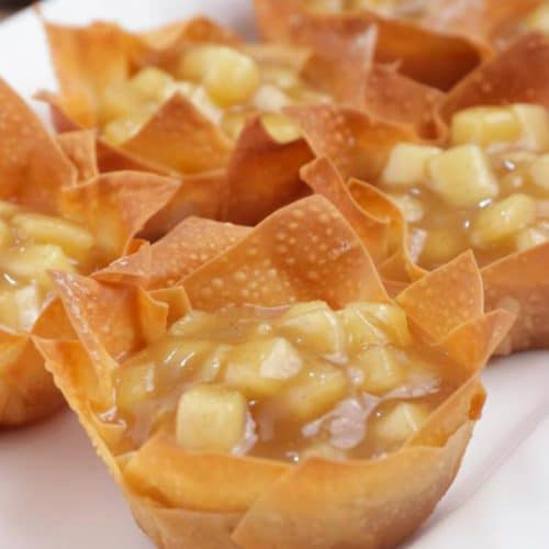 Easy Apple Pie Wonton Cups – Best Homemade Mini Apple Pie Recipe – {Easy} Recipes – Snacks – Desserts – Breakfast – Quick – Simple